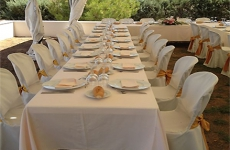 Catering Canapearte